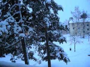 Whitechristmas20101224_058